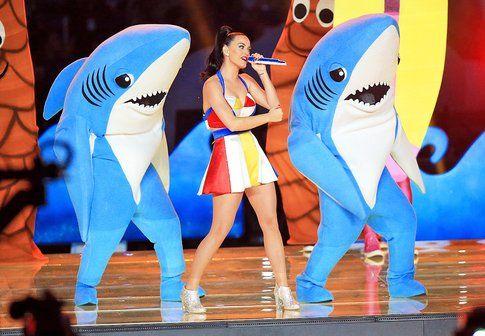 Ecco Katy e i suoi Squali
