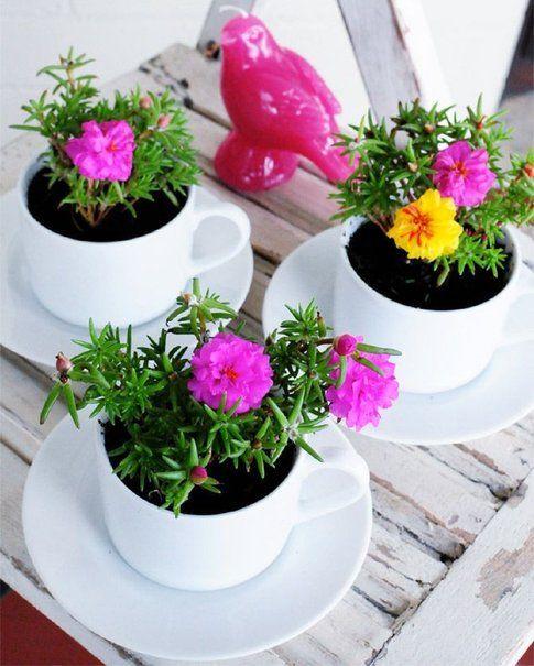 Tazzine da caffè fiorite - Pinterest