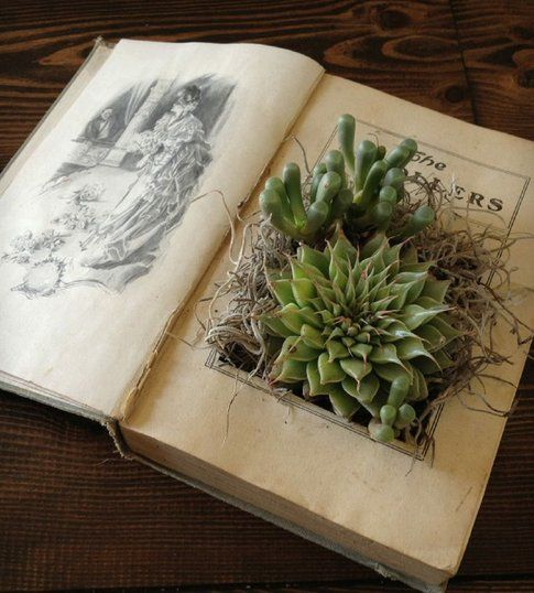 Libro porta fiori - Pinterest