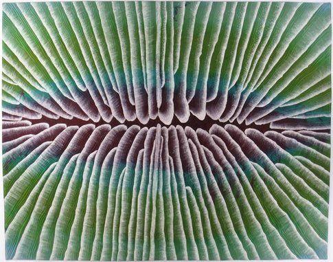 Betty Busby fiber art