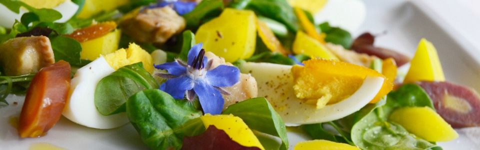 Insalata primavera, un piatto leggero per salutare la nuova stagione