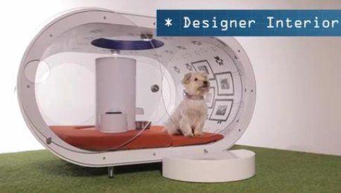 Cuccia per cani Samsung - Fonte: Ansa