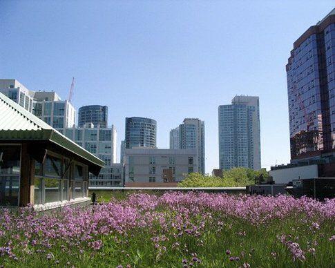 Toronto, Canada. Foto 416Style/Flickr