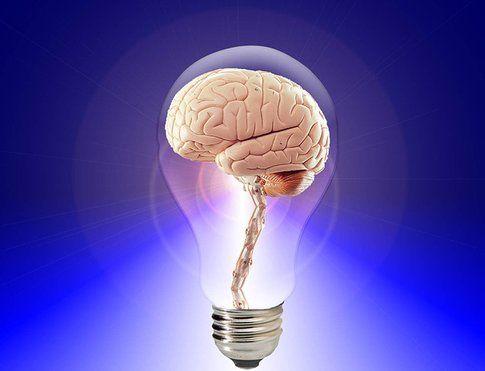 Alimenti per il cervello