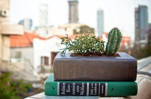 libro-vaso