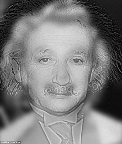 Marilyn Monroe o Albert Einstein?