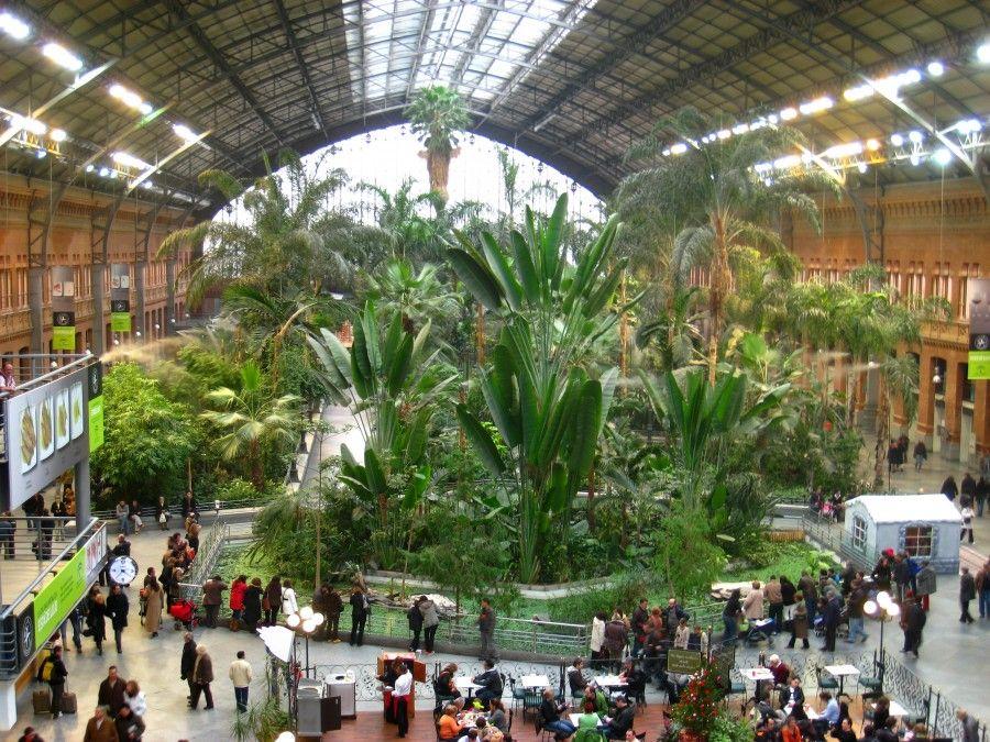Invernadero_de_Atocha,_Madrid_-_view_2
