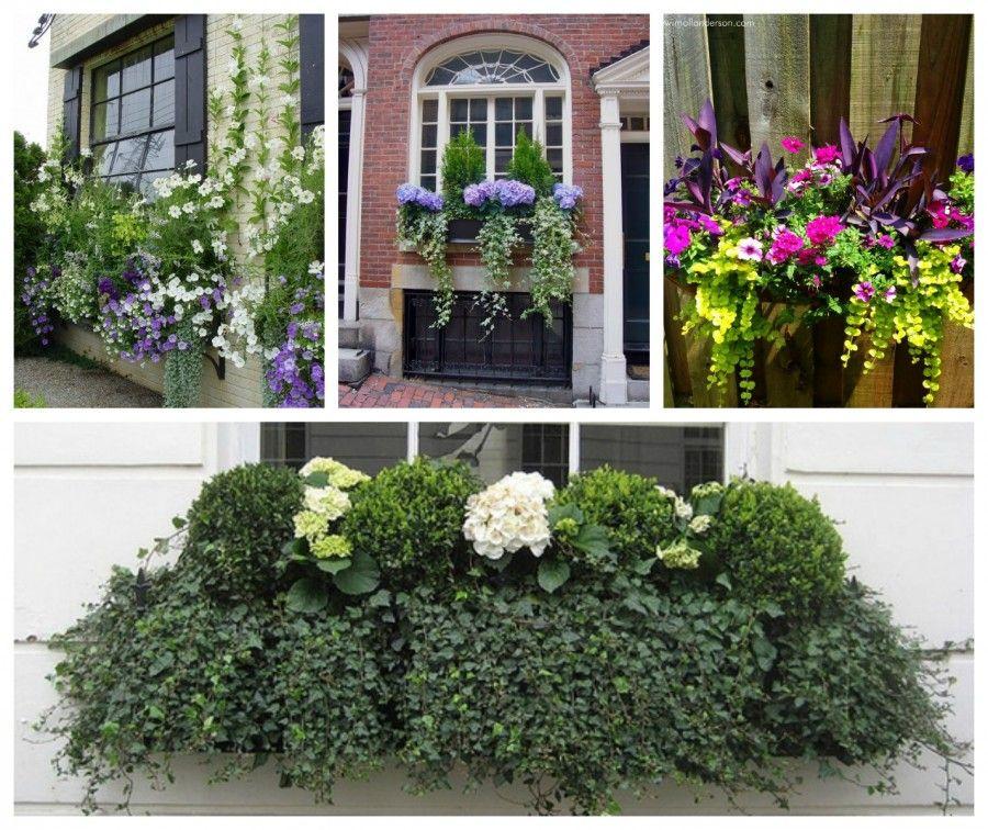 Fioriere da balcone come valorizzare piante e fiori in for Alberelli da vaso per esterno
