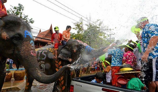 battaglia-acqua-elefanti