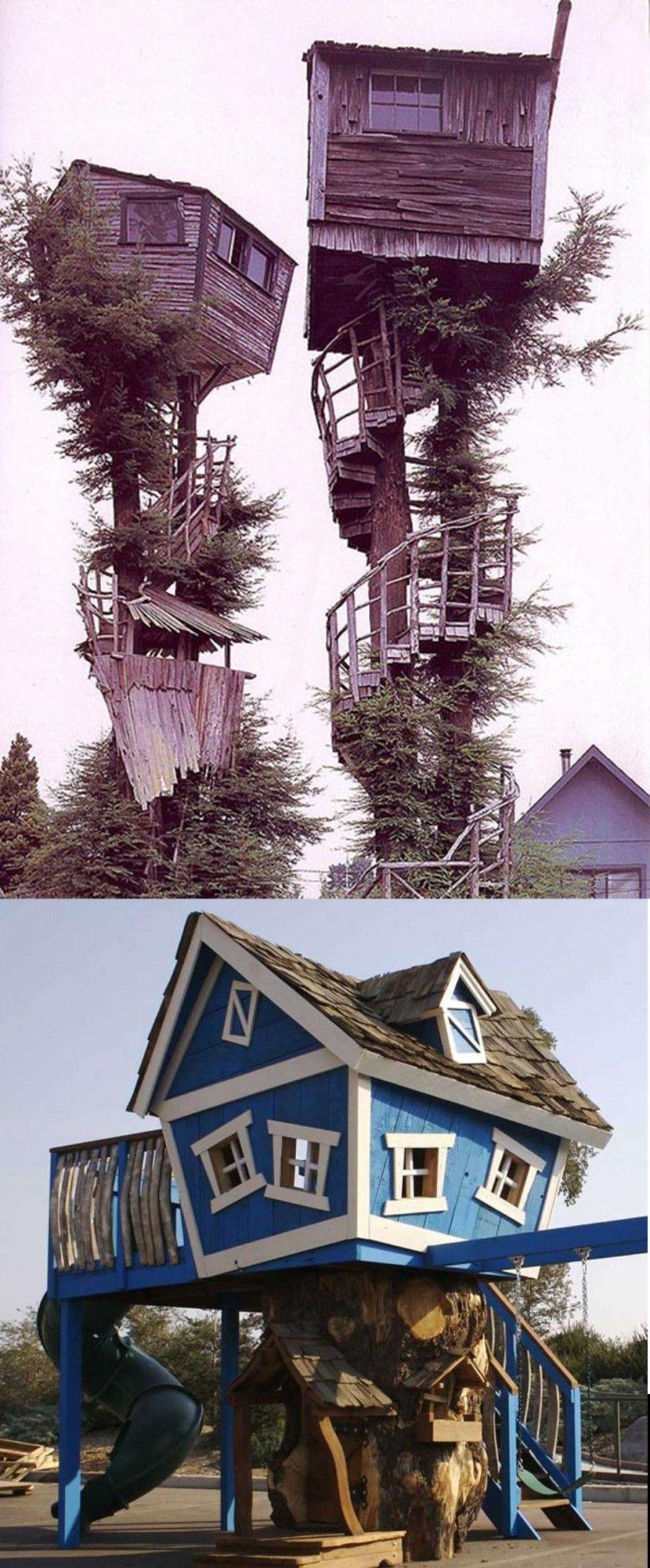 casa_albero