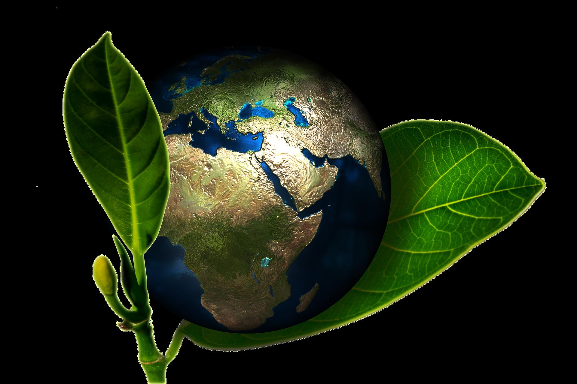Earth Day: gli universitari italiani più attenti al rispetto dell'ambiente