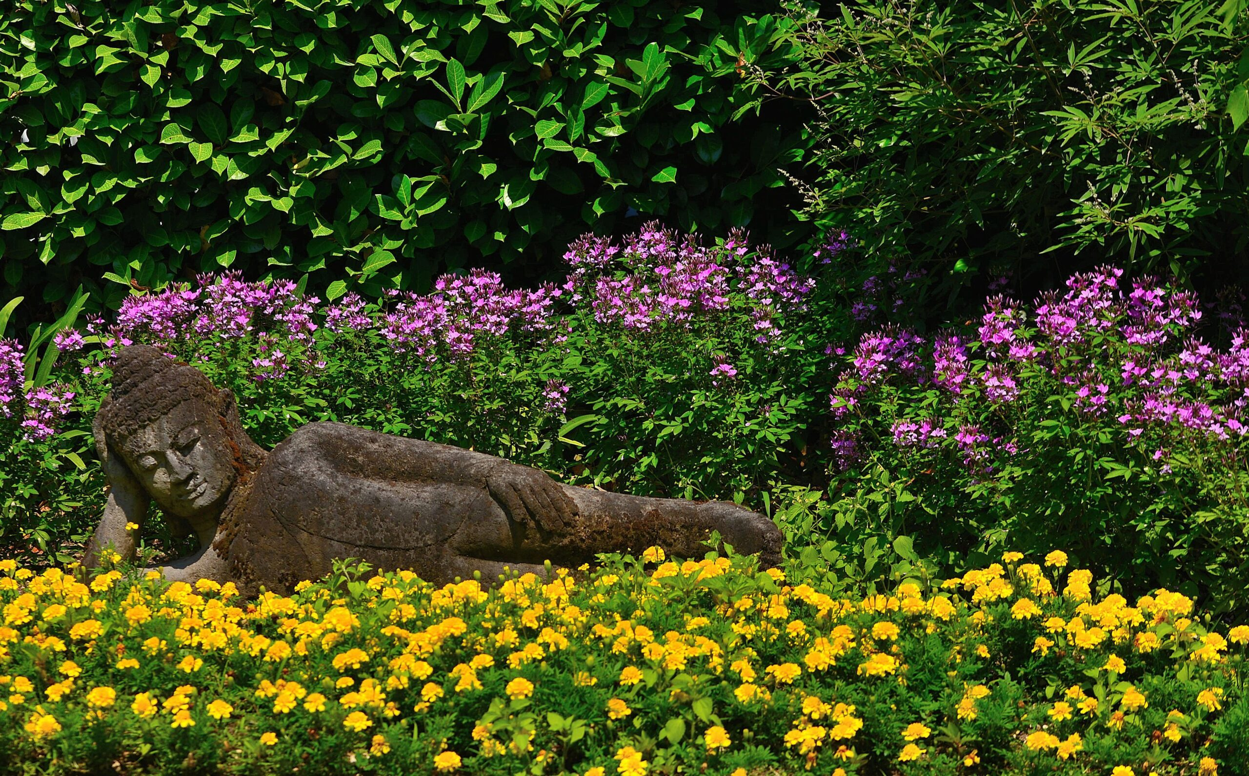 I più bei giardini botanici del mondo