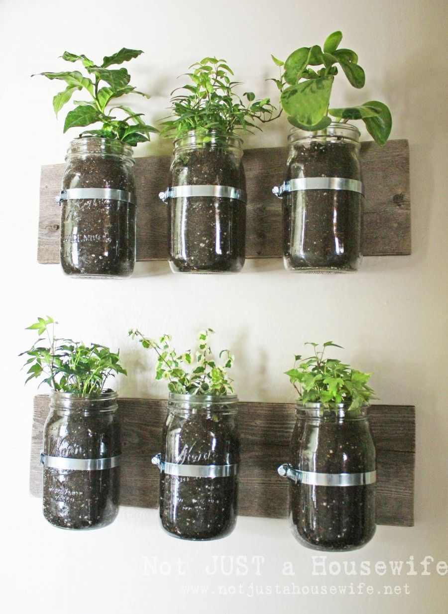 home-and-garden-amazing-indoor-herb-garden-in-kitchen-excellent-indoor-herb-garden-ikea-astonishing-photographs-of-indoor-herb-garden-decoration-ideas-indoor-herb-garden-maintenance-miracle