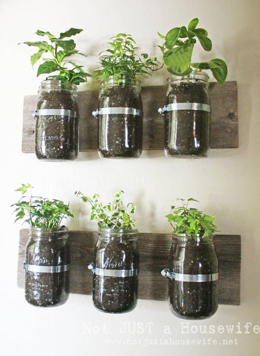 home-and-garden-amazing-indoor-herb-garden-in-kitchen-excellent-indoor-herb-garden-ikea-astonishing-photographs-of-indoor-herb-garden-decoration-ideas-indoor-herb-garden-maintenance-miracle