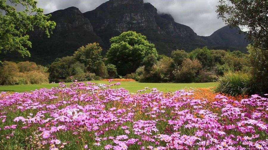 impressive_botanical_garden_040384
