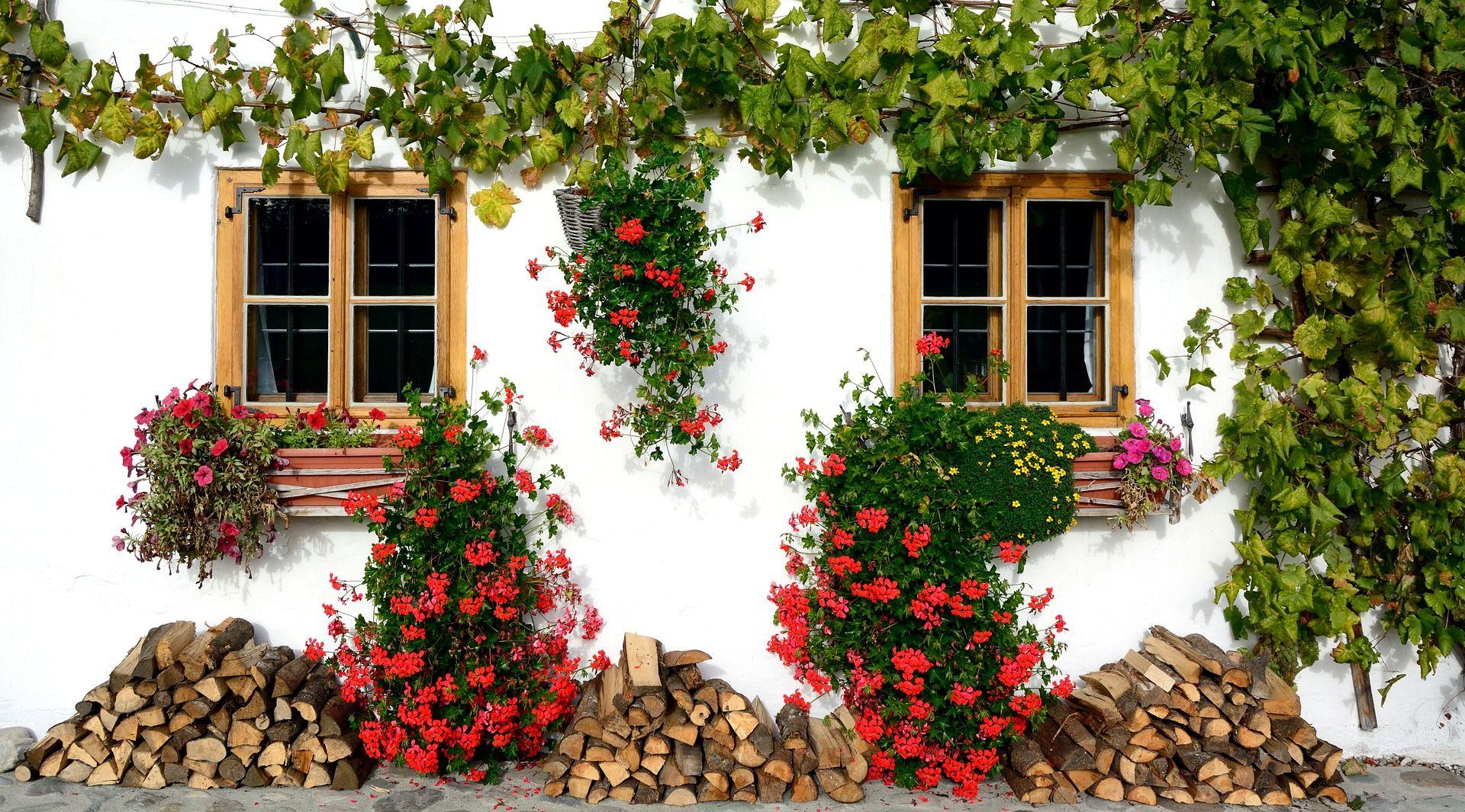 Ortensie Sul Balcone : Fioriere da balcone come valorizzare piante e fiori in