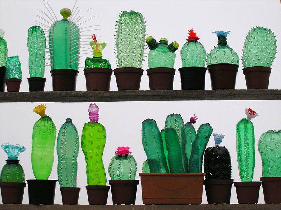 plant-1_jpg_940x0_q85