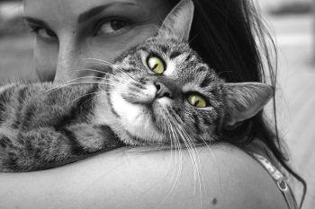 Lo sapevate che esistono social network per gli animali?