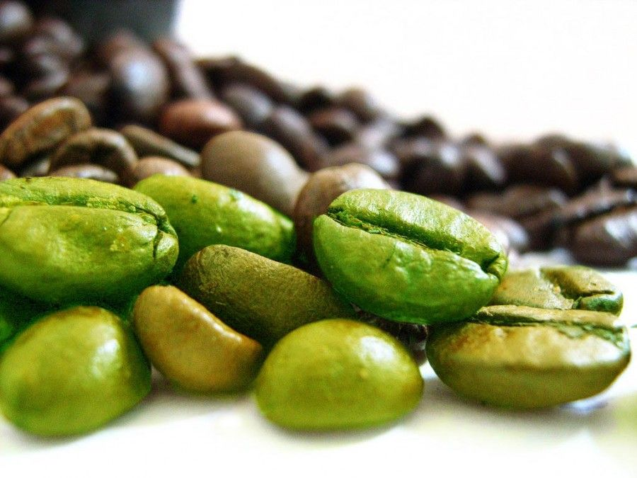 Il caffè verde deve il suo colore al fatto che anziché torrefatto viene lasciato essiccare al sole