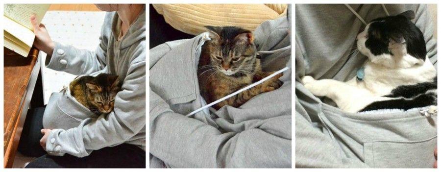 felpa-per-gatti2