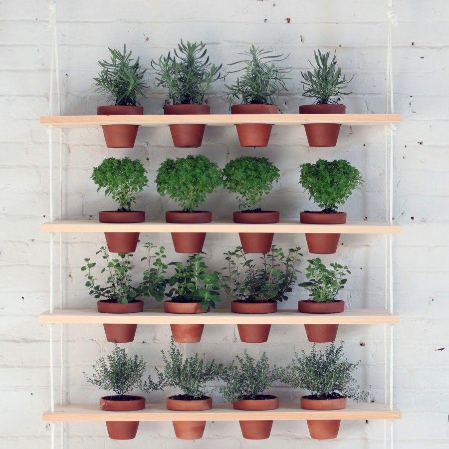 homemade-modern-diy-plant-shelves-gardenista-4
