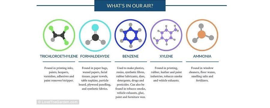 Le principali sostanze nocive che possiamo trovare a casa