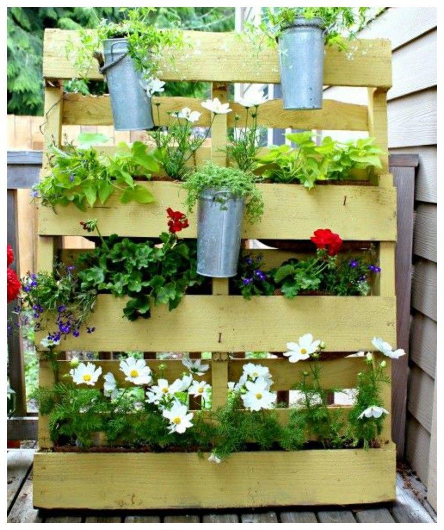 Parete Piante Aromatiche : Idee creative per allestire il terrazzo bigodino