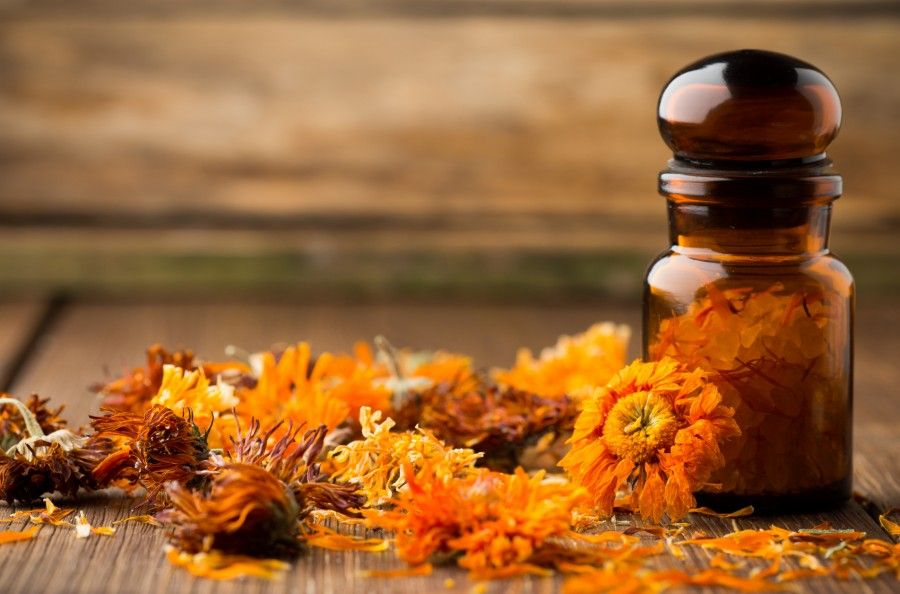 Calendula homeopathic.