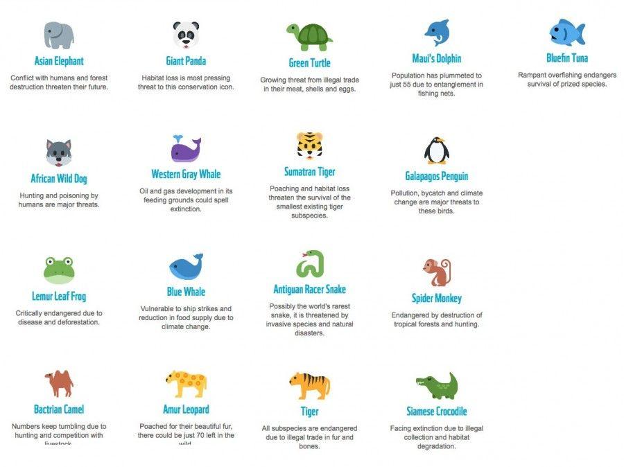 Specie di animali a rischio estinzione