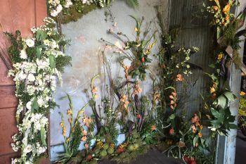 Flower House: una casa abbandonata riempita di fiori