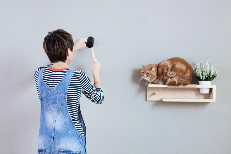 Interior design per gatti felici