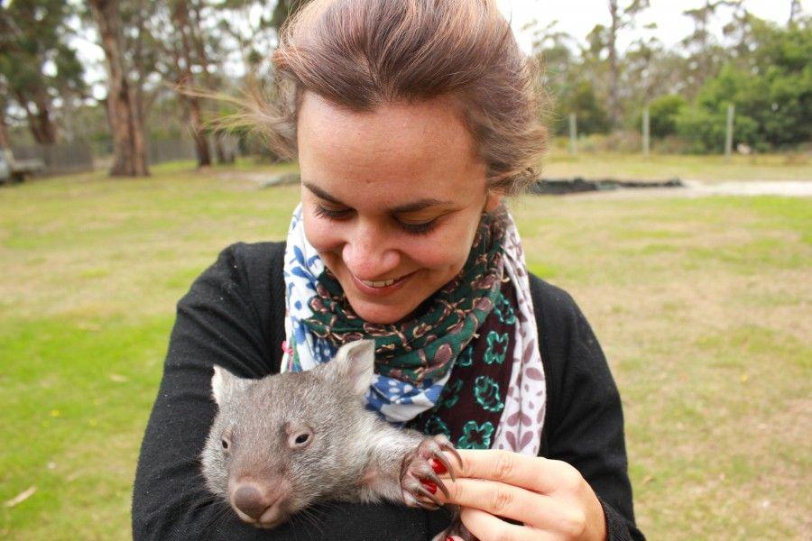 Angel, il cucciolo di wombato più dolce del mondo!
