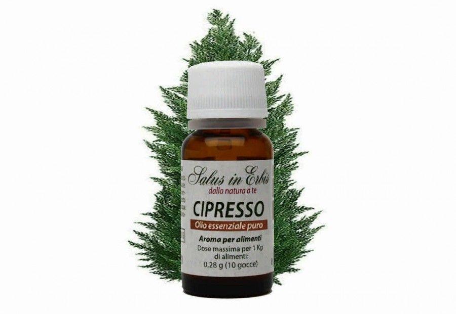 cipresso