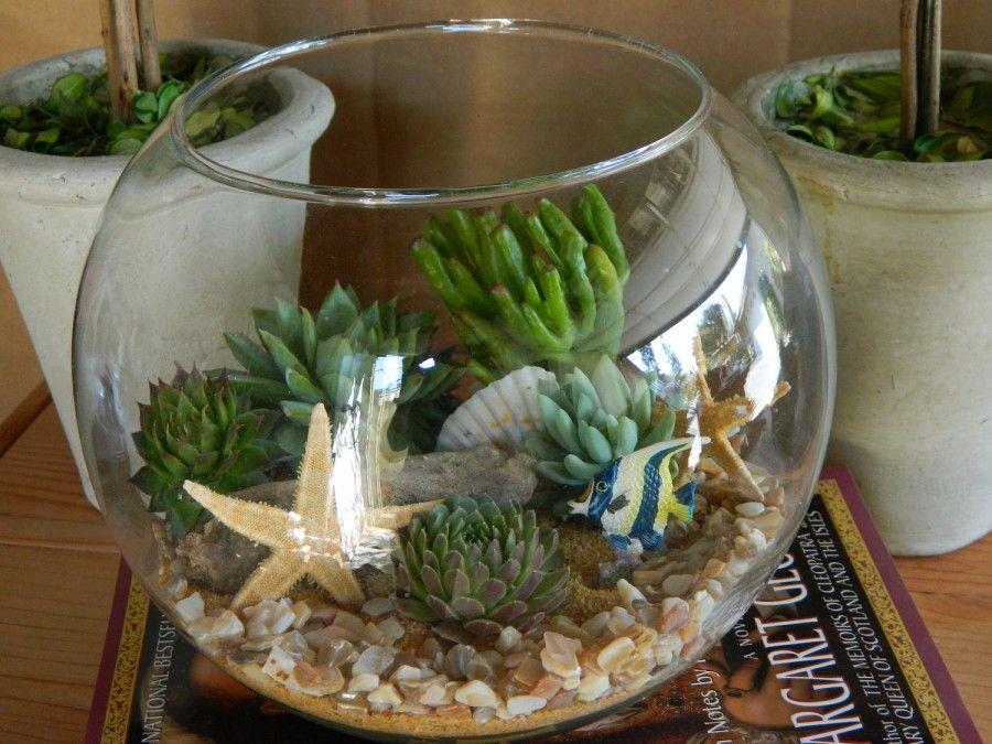 terrarium marino etsy