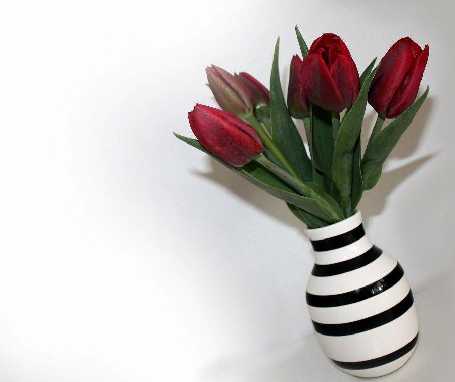 tulips-743775_1920