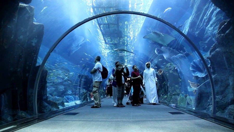01Dubai Mall Aquarium