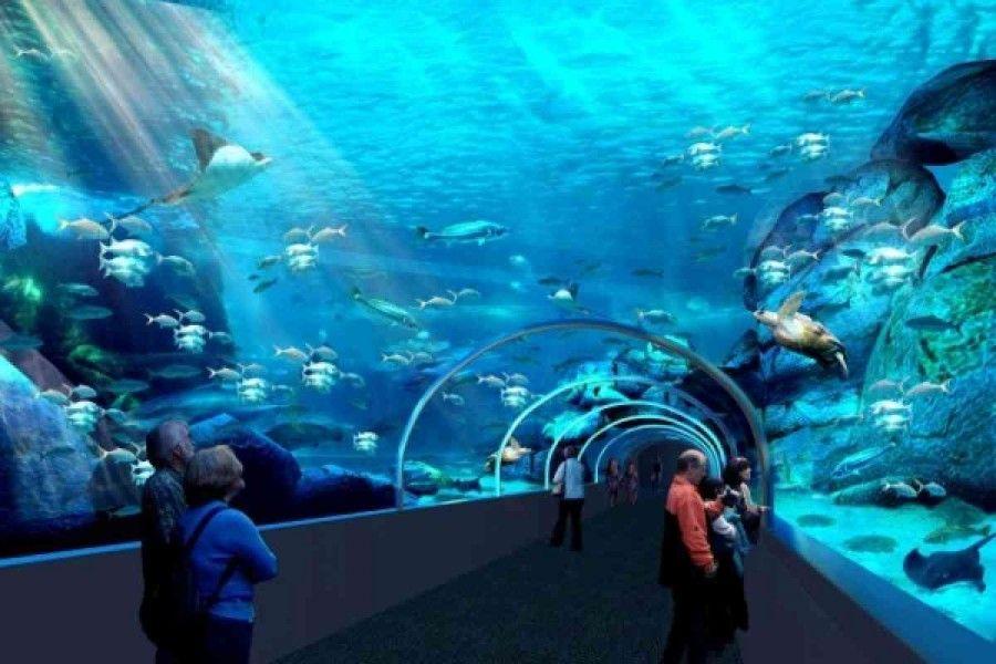 07Two Oceans Aquarium