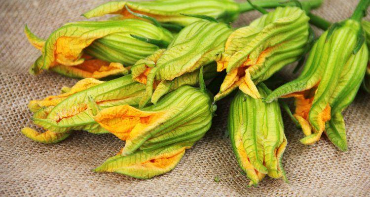 La ricetta dei fiori di zucca ripieni gluten free bigodino for Cucinare x celiaci