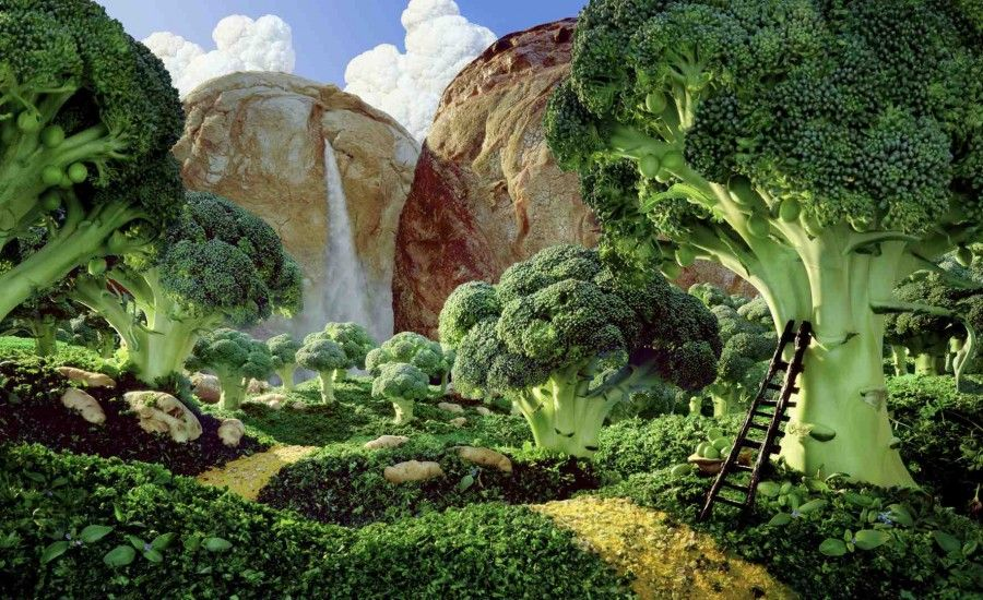 Brocolli Forest Used in Finland for Voimmarrini Butter campaign in 2000 for one year