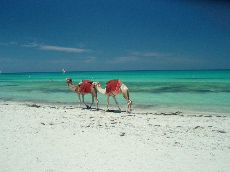 isole-africane-Djerba
