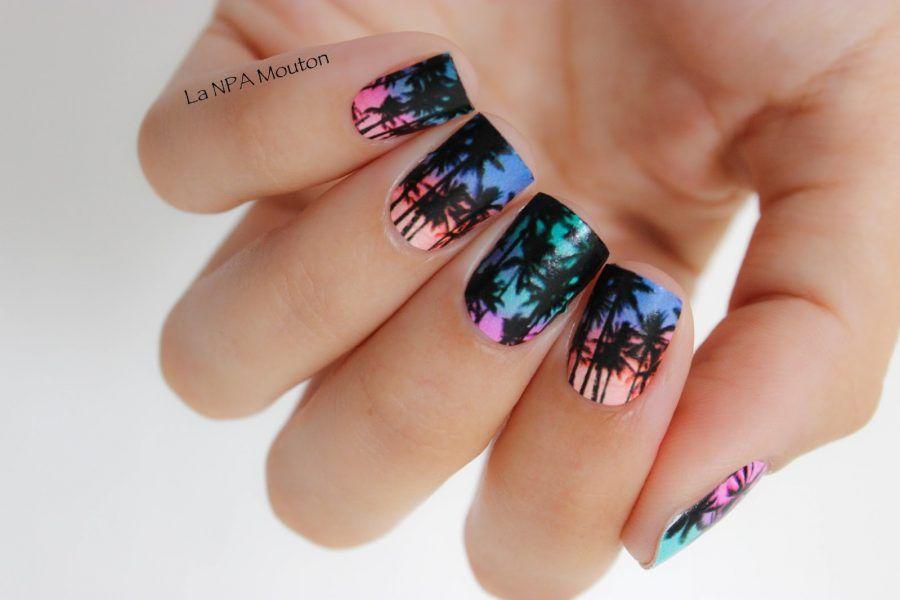 Tante palme colorate