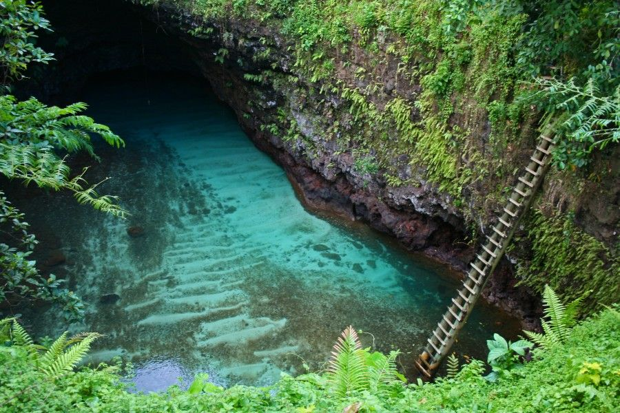 """The """"Toe Sua Ocean Trench"""".   There were only 3 things to see in Samoa - Lava Tubes, Beaches & Waterfalls. This was a lava tube. Jhei managed to get down that ladder without killing herself OR drowning. This compound was set in a really beautiful garden, as were a lot of places in Samoa"""