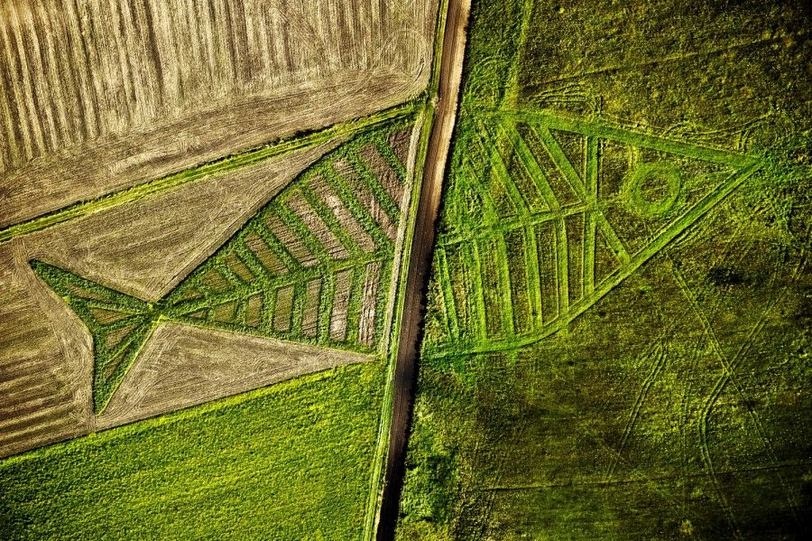 epa02877927 An aerial view shows the land art installation by Polish artist Jaroslaw Koziara as a part of the Land Art Festival on the field between Horodyszcze (Poland) and Warez (Ukraine), 23 August 2011. The giant fish was created by seedding different kind of plants on the field between the Polish and Ukrainian border. It in symbolic and physical ways crosses Schengen area towards Ukraine. The art of land is an artistic act to show that nature and culture are beyond borders established by man.  EPA/WOJCIECH PACEWICZ POLAND OUT