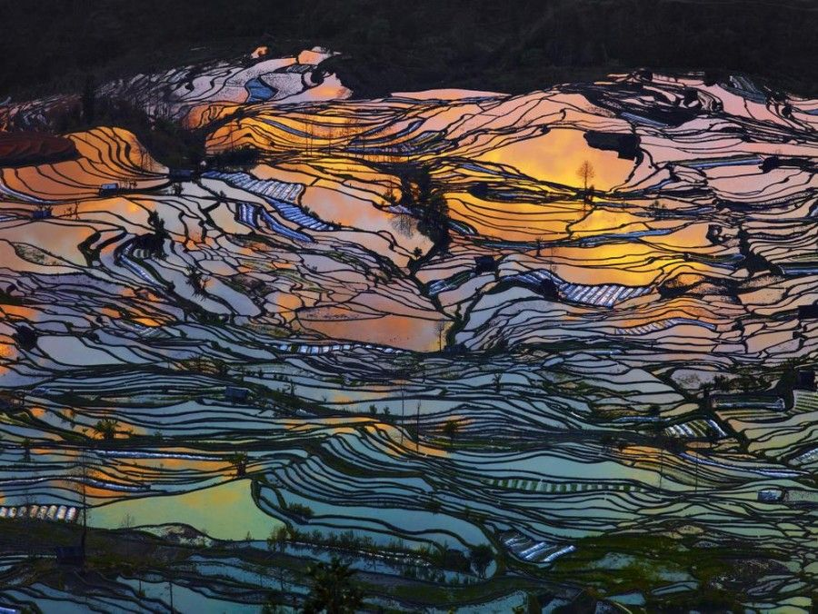 THE 2015 ABSTRACT AWARD: THIERRY BORNIER