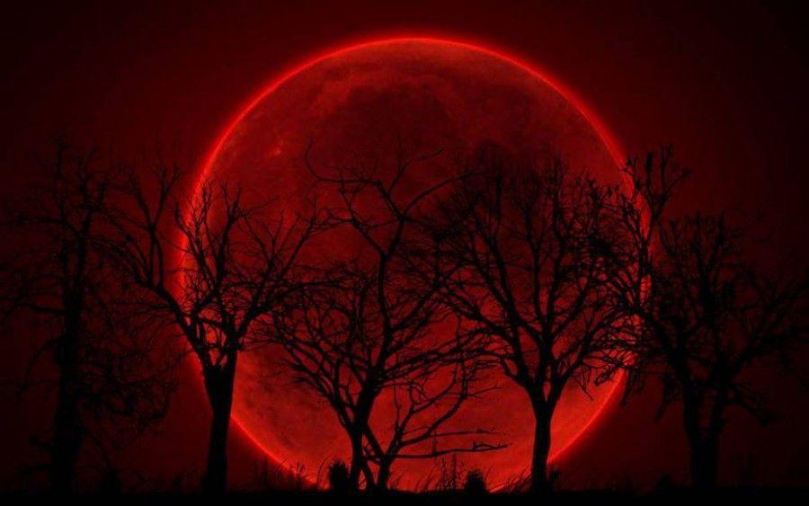 eclissi-di-luna3