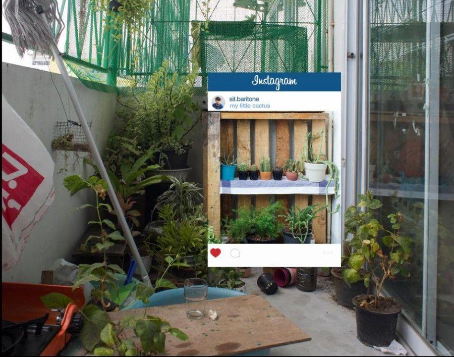 foto-instagram-giardino