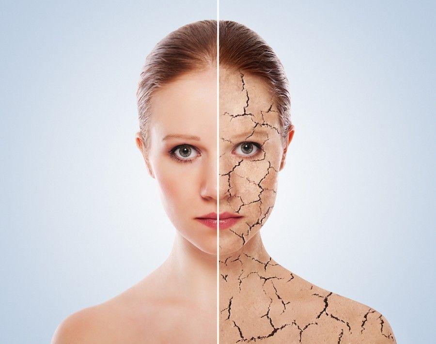 Dopo l'estate la pelle è sempre molto disidrata ecco perchè è essenziale scegliere i prodotti giusti per rigenerarla al meglio