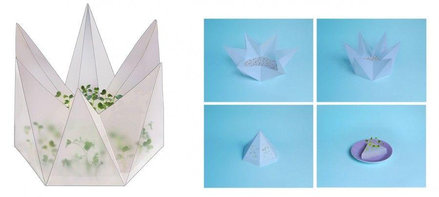 kit-giardinaggio-origami