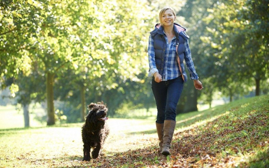 woman walking her black dog in the park on a sunny day