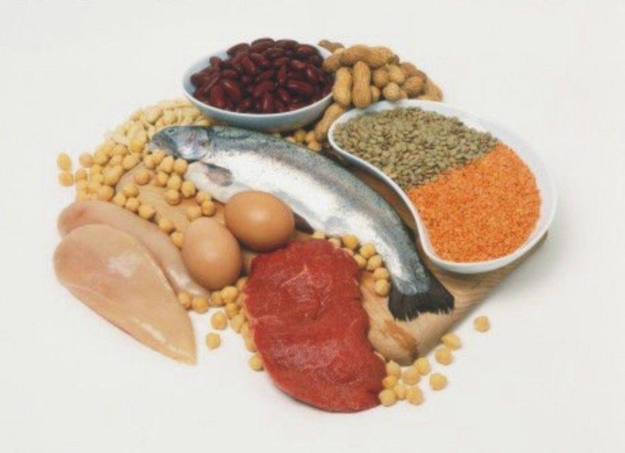 tornare-in-forma-proteine